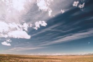 cloud case management, online case management,